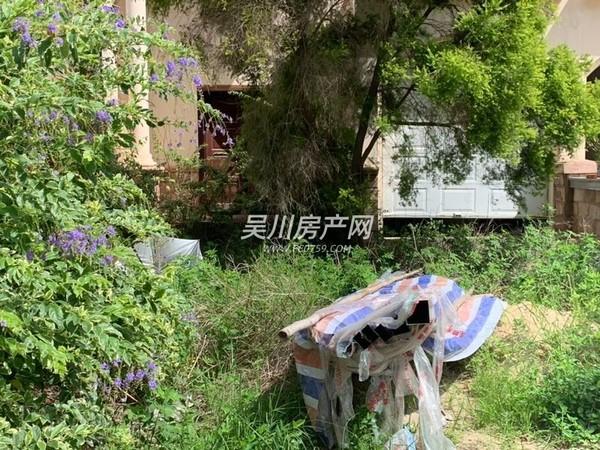 锦绣华景 别墅 环境清静 空气清新