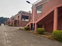 大山江厂房包地皮出售,出入交通便利,可做厂房、物流、储存仓库