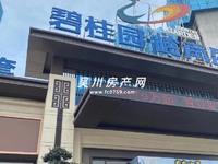 出售碧桂园岭南盛世全新精装3室2厅2卫110平米55万住宅