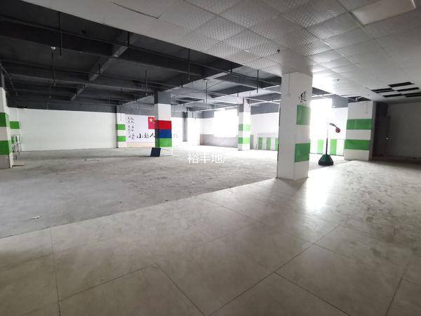 出租新世界广场152.9方办公室出租